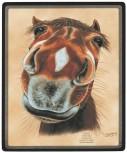 """Mousepad mit Pferdemotiv """"SASSI"""" NEU Gr. ca. 24x20cm (22504) Eyecatcher für den Schreibtisch"""