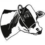 Rücken-Aufnäher - Kuh schwarz-weiß - 08586 - Gr. ca. 25cm x 18,5cm