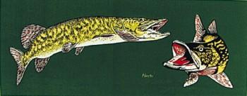 PVC Aufkleber Applikation Fisch - Angler - Angeln - FISCHE - 307140 - Gr. ca. 20 x 5,5 cm