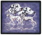 Mauspad MOUSEPAD Hundemotiv - Dalmatiner - 22588 - ©Kollektion Bötzel
