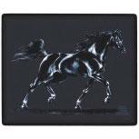 Mauspad MOUSEPAD Pferdemotiv ARABISCHER HENGST - 22500 - ©Kollektion Bötzel